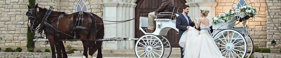 Eagle Eye Ranch Carriage Company