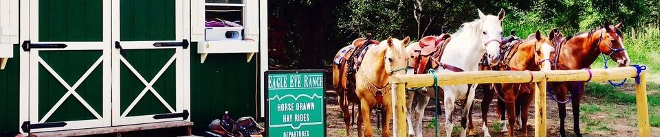 Eagle Eye Ranch Carriage Company